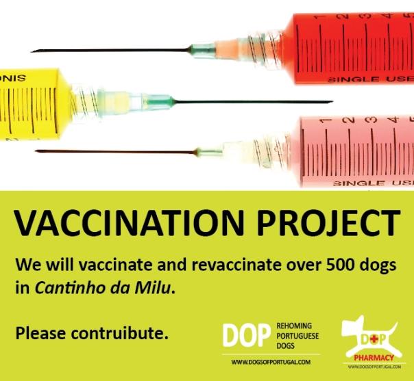 vaccination project EN