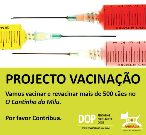 vaccination project PT